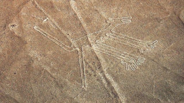 У Перу виявили гігантський геогліф кота. Йому понад 2 тисячі років