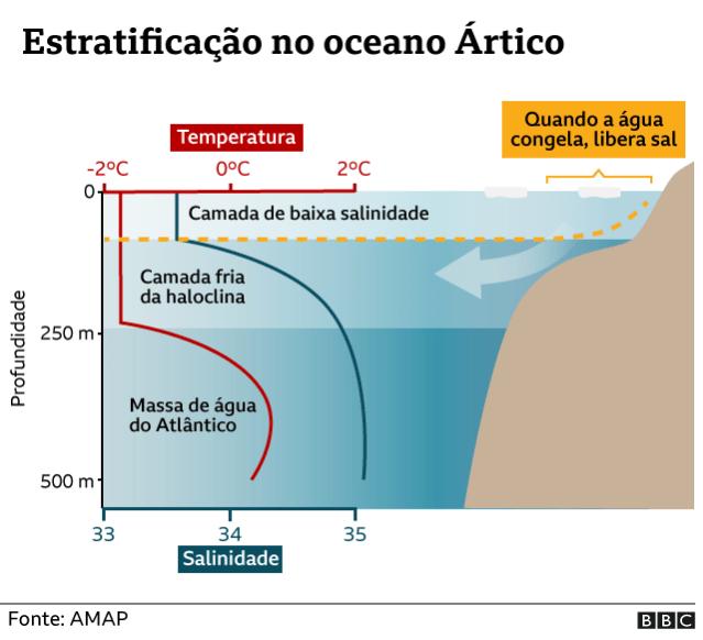 Gráfico sobre estratificação no Oceano Ártico