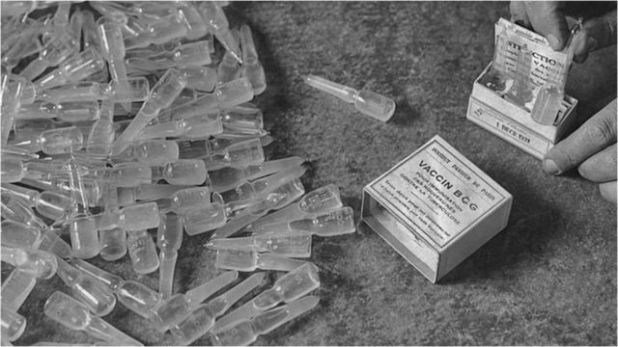"""صورة أرشيفية تعود للعام 1931 للقاحات """"بس سي جي"""" المضادة لمرض السل"""
