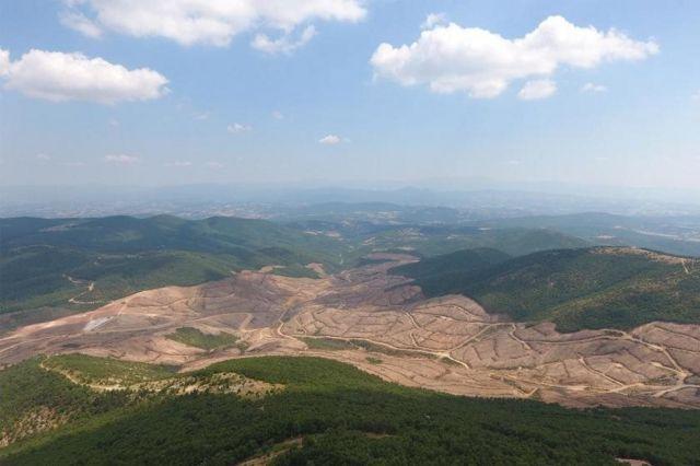 Türkiye Ormancılar Derneği, maden ruhsatı verilen Kaz Dağları'nda 347 bin 815 adet ağaç kesildiğini söylüyor