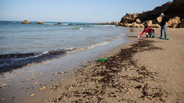 Men clean the sand from tar in Hadera