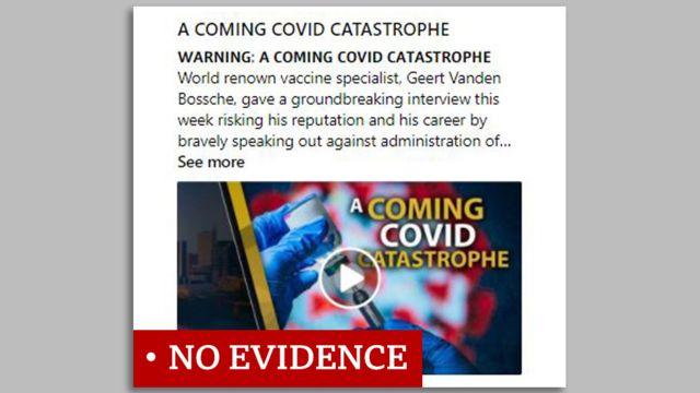 백신을 '코로나 재앙'이라고 부르는 글의 스크린 캡쳐