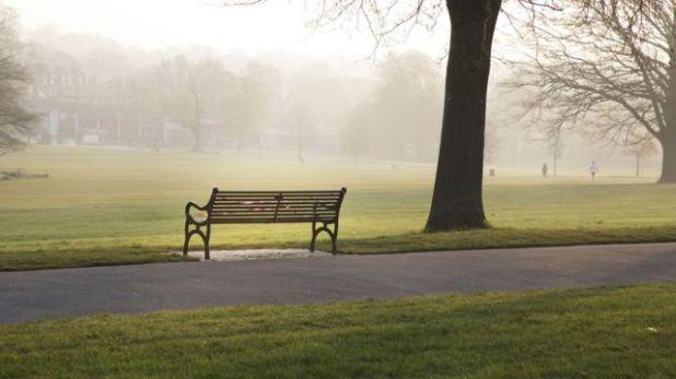 متنزه فارغ في لندن