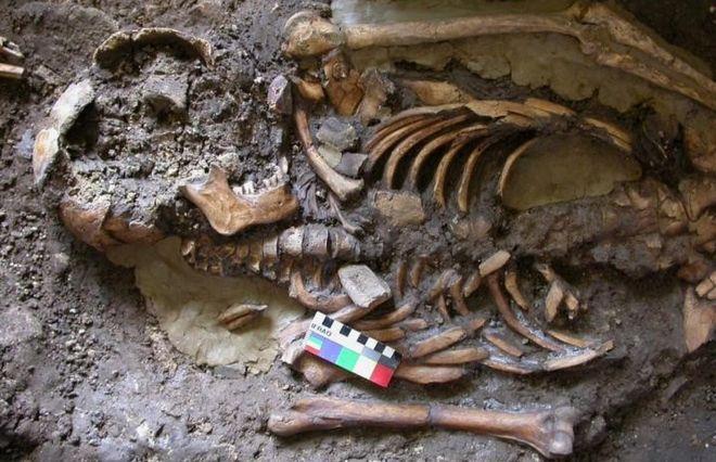 Kotias Klde skeleton