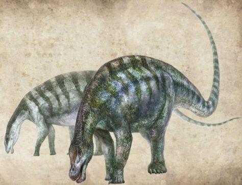 リンウーロン・シェンキのイラスト。この名は「霊武(リンウー)の驚くべき竜」という意味