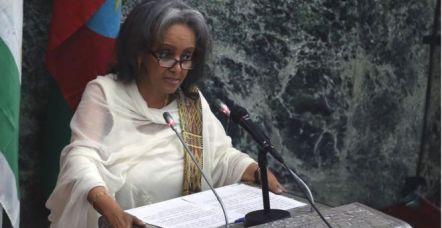 La toute nouvelle présidente de la République démocratique fédérale d'Éthiopie est la première femme élue à ce poste dans le pays. Diplomate, Sahle-Work Zewde a représenté son pays dans une dizaine de pays d'Afrique et en Europe