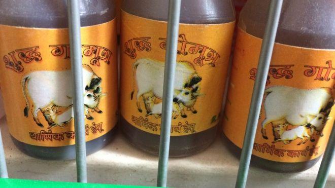 Bottles of cow urine on a shop shelf
