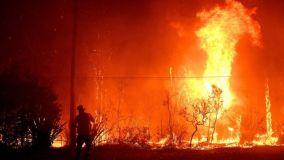 Sydney bushfires - firefighter standing in front of huge flames in Sydney