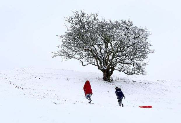 People go sledging on Farthing Common in Kent, on 8 February