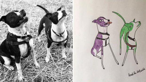 Dogs portrait