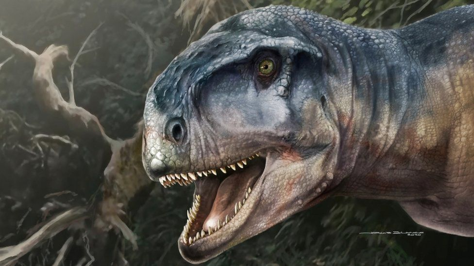 Bestemming Patagonië - Maak kennis met de vleesetende dinosaurus uit Patagonië