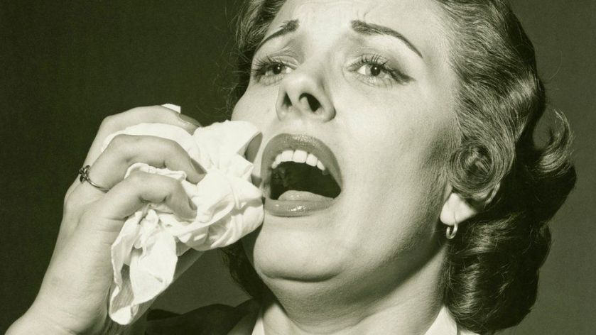 Sneezing myths and facts - BBC News
