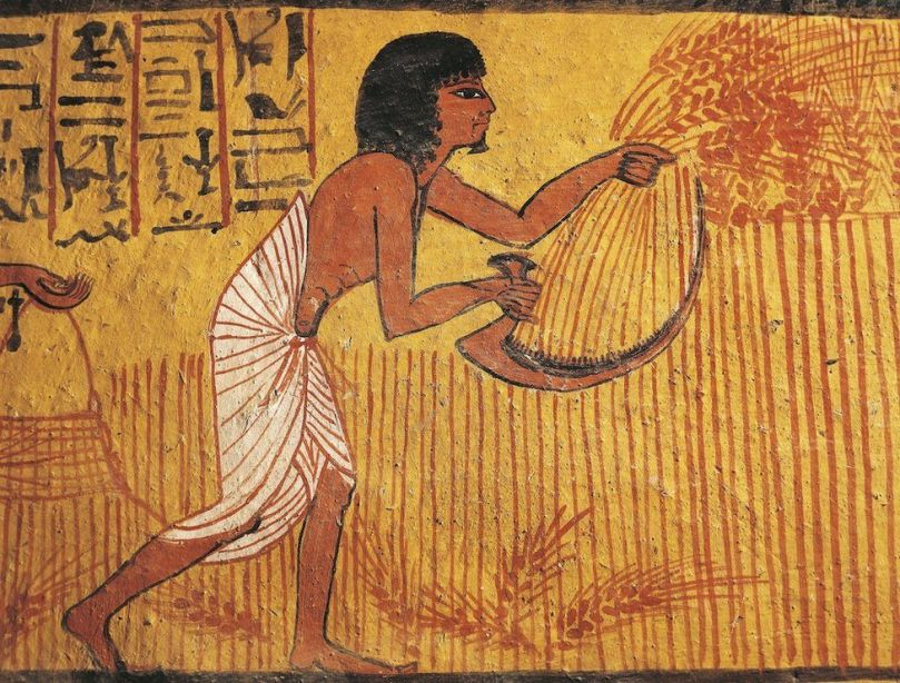 Wall painting of a farmer from the tomb of Sennedjem, an artisan who lived in ancient Egypt