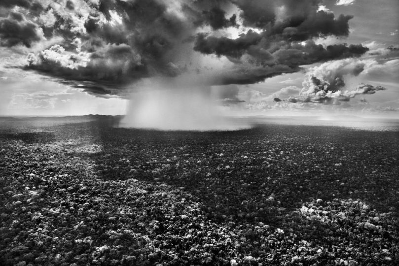 Black and white photograph of a rain cloud above forest