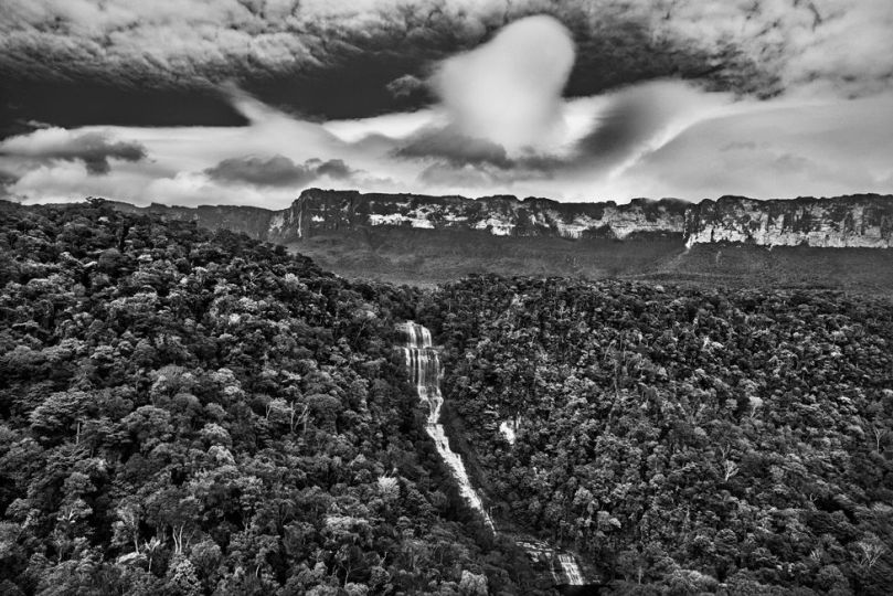 Black and white photograph of clouds above forest