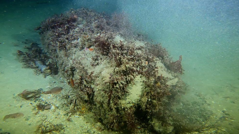 Unexploded ordinance on the seabed