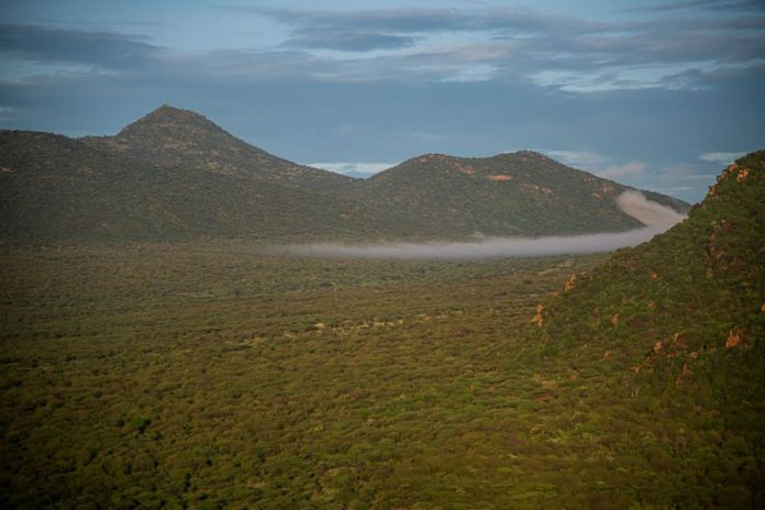 1 Les plaines de Samburu et du comté d'Isiolo au Kenya DSC_6917