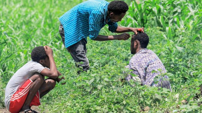 A man sitting crouched by shrubs has his hair cut by another man with a razor at a camp for Ethiopian refugees of the Qemant ethnic group in the village of Basinga in Basunda district of Sudan's eastern Gedaref region on August 10, 2021