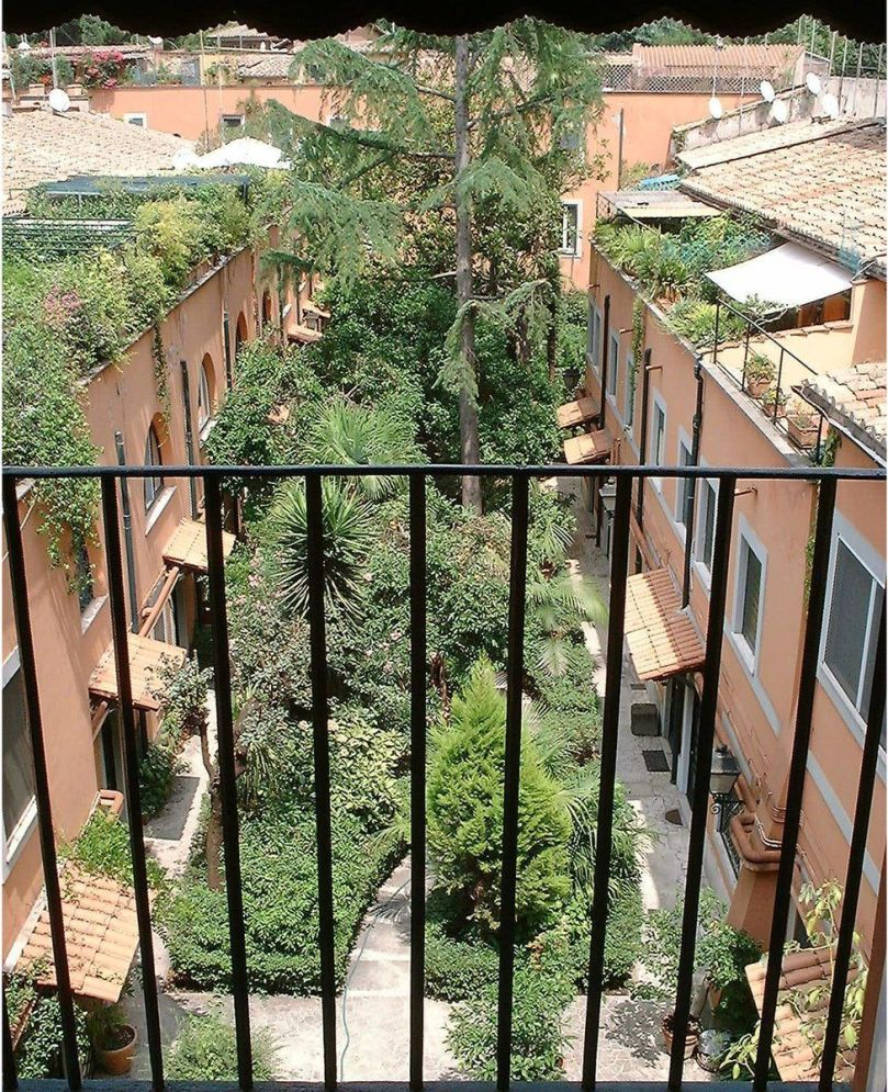 The view from the balcony of David Willey's former flat, looking down on the orange trees