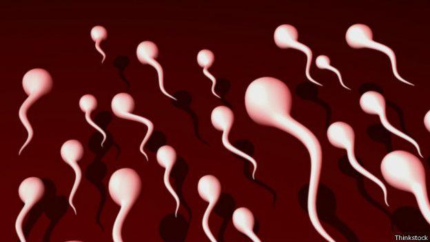 Esperma