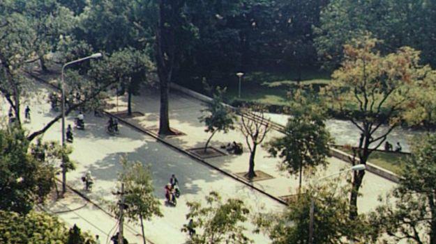 Cây xanh Hà Nội