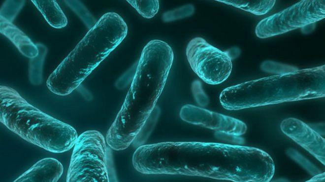 Resistencia antibiótico