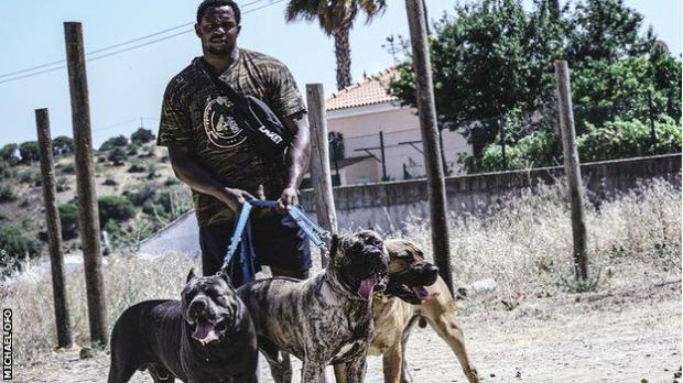 Dillian Whyte with his dogs in Portugal