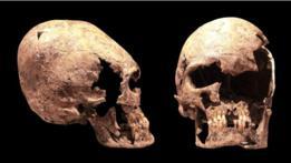 Cráneos deformados