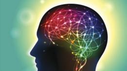 """""""En alguna parte de nuestro cerebro, se genera nuestra personalidad""""."""