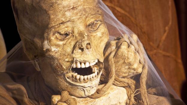 A mummy found at Laguna de los Condores (Credit: Credit: Frans Lemmens/Alamy)