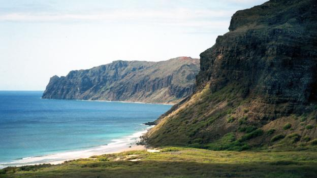 The coast of Ni'ihau (Credit: Credit: Wikipedia.org)