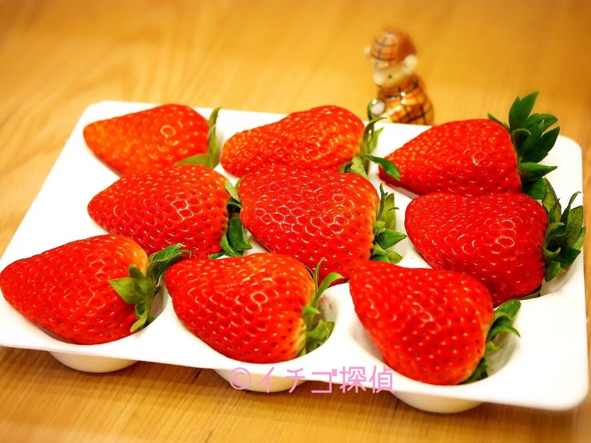 イチゴ探偵|【華かがり】【ひょうたんいちご】などお取り寄せ巨大苺特集!【まりひめプレミアム】や【レイベリー】も!