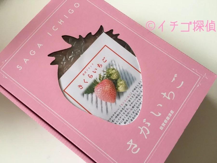 イチゴ探偵|【あその小雪】【天使の実】【雪うさぎ】など白いちご&ピンクイチゴまとめ!なんと10種以上も!?