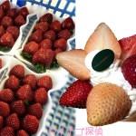 イチゴ探偵|くろいちご【真紅の美鈴】が食べられる場所まとめ!いちご狩りにくろいちごパフェやタルトも!