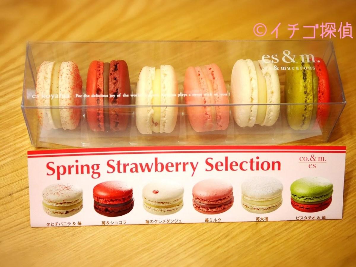 イチゴ探偵|苺大福マカロン!?パティシエエスコヤマの春苺セレクションで6種類のいちごマカロンを食べ比べ!