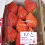 イチゴ探偵|九州生まれのの新品種いちご【恋の香】を嶋村屋 熊谷いちご園で購入!