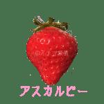 イチゴ探偵|アスカルビー品種図鑑・断面図