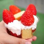 イチゴ探偵|いちご狩りに4種苺のケーキ作り!嶋村屋 熊谷いちご園の1時間コースでバウムクーヘン入りのオリジナルケーキを作ろう!
