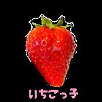 イチゴ探偵|いちごっ子品種図鑑