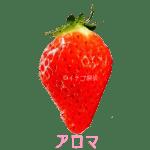 イチゴ探偵|アロマ品種図鑑・断面図