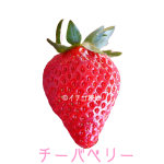 イチゴ探偵|チーバベリー品種図鑑・断面図