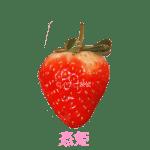 イチゴ探偵|恋姫品種図鑑・断面図