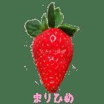 イチゴ探偵|まりひめ品種図鑑