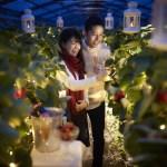 星野リゾート リゾナーレ熱海「Night Strawberry Date」夜のイチゴ狩りでロマンチックなバレンタインデートを!