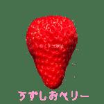 イチゴ探偵|うずしおベリー品種図鑑・断面図