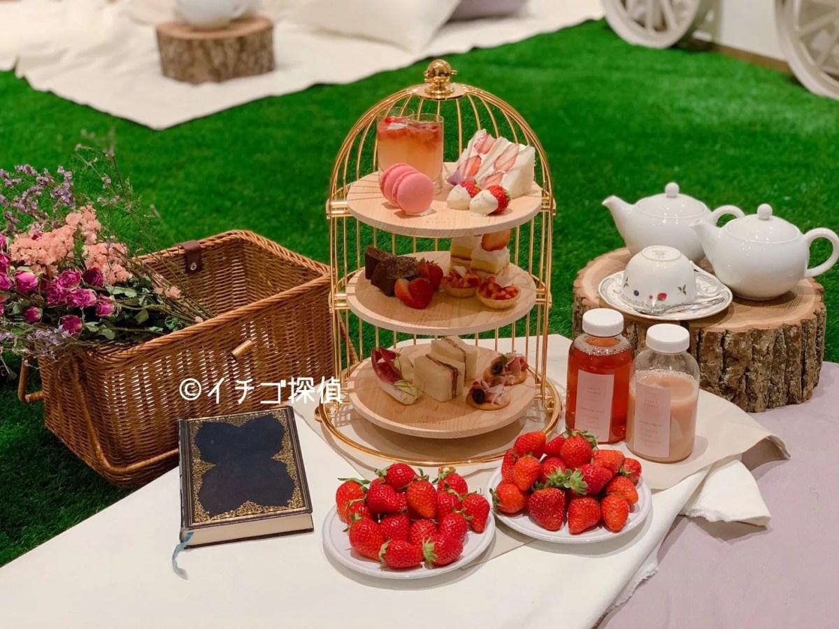 【フルーツピクニック(FRUIT PICNIC 原宿表参道店)】いちご食べ放題付のアフタヌーンティーを芝生の上で!