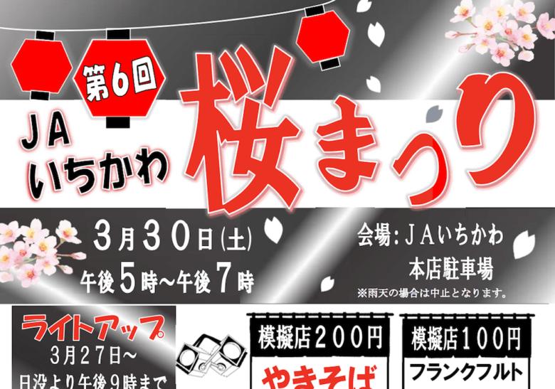 第6回JAいちかわ桜まつり紹介アイキャッチ