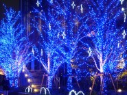 Winter illuminations in Nagoya
