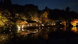 Higashiyama - autumn leaves at night