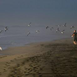 入選 海霧の朝